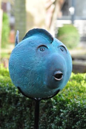 Grote- blauwe-bolle-vis